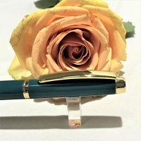 Pix Monet Gold 24K Turquoise 4