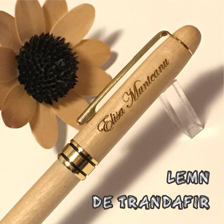 Roosewood pen WG 11