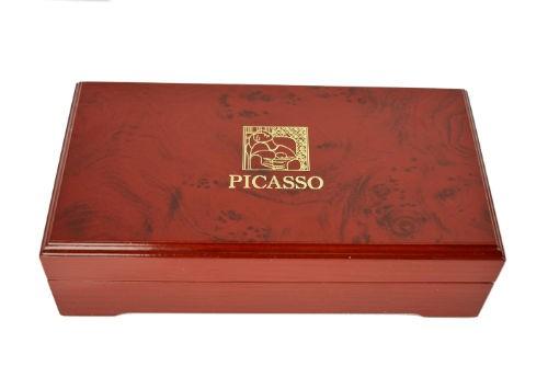 Set Pix şi Stilou Picasso Model 918