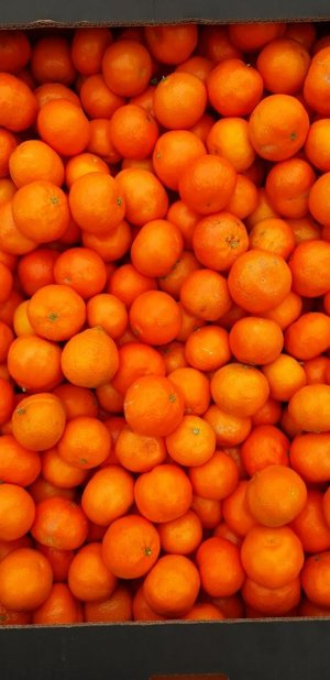 Clementine Spania