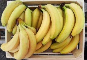 Banane Cal I