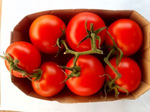 Roșii Organice Spania CAL I