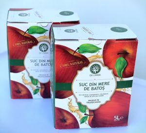 Suc din mere de Batoș 5L