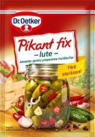 Dr.Oetker - Picant Fix - Iute 100g
