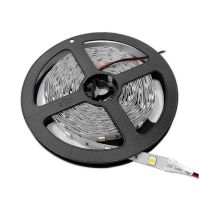 BANDA LED 5050 30 SMD/m 2700K -DE INTERIOR