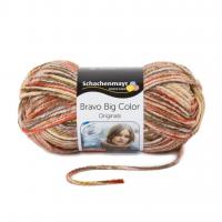 Bravo Big Color- Schachenmayr 00126