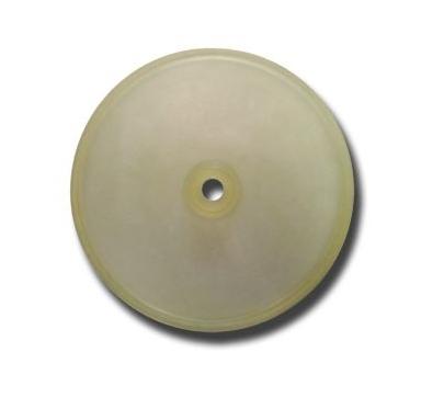 membrana laterala
