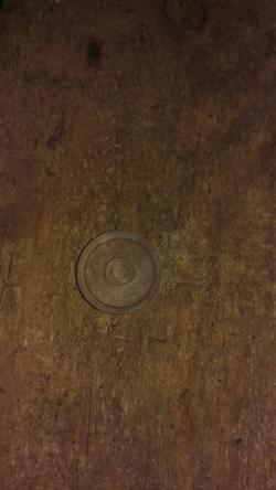 Membrana mica pulsator