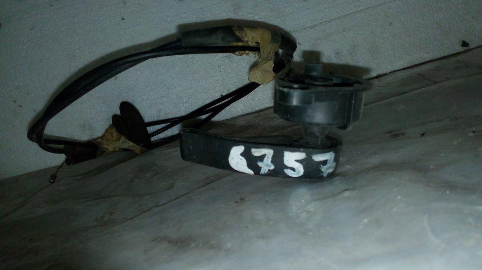 CablucapotamotorClio (3)