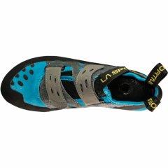 Tarantula Blue C600600