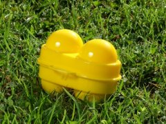 Cutie Coghlans pentru 2 oua