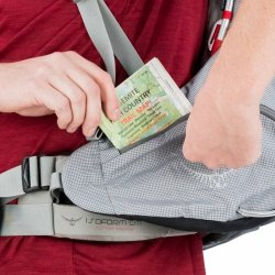Aether ProLarge dual removable hipbelt pocketsweb