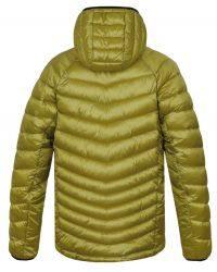 10005238HHX01Dolph yellow stripe1