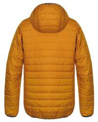 10005240HHX01Edison golden yellow1