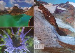 Munti lacuri flori autor dr. Kovacs Jozsef Zoltan 2