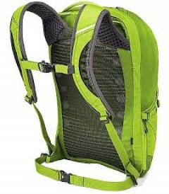 Osprey Momentum 26 Orchard Green back