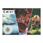 Caiet geo/bio mare 24 file
