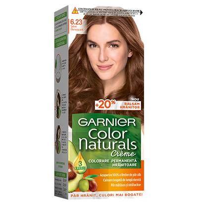 6.23 Saten Efervescent Garnier Color Naturals