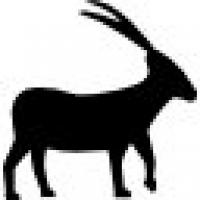 Banut argint .925 10 mm gravat zodia capricorn