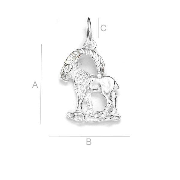 Pandant argint .925 zodia Capricorn