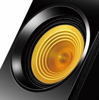 Boxe 2.1 EDIFIER (P3060), RMS 10W-30W, 2 sateliti x8W + subwoofer de 14W, frecventa 160Hz-20kHz, raport semnal >85dBA, cu port USB port, MP3 Player, butoane: pornire/oprire, volum, Bass, redare/pauza, navigare folder, culoare: negru-galben