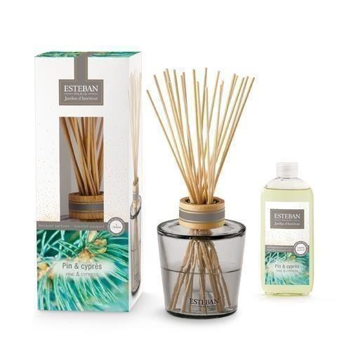 Buchet Parfumat Sapin Dore cu Rezerva de 75ml - Esteban Paris