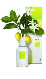 Parfum ambient Limone di Capri 240 ml