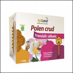Polen crud trandafir salbatic eco