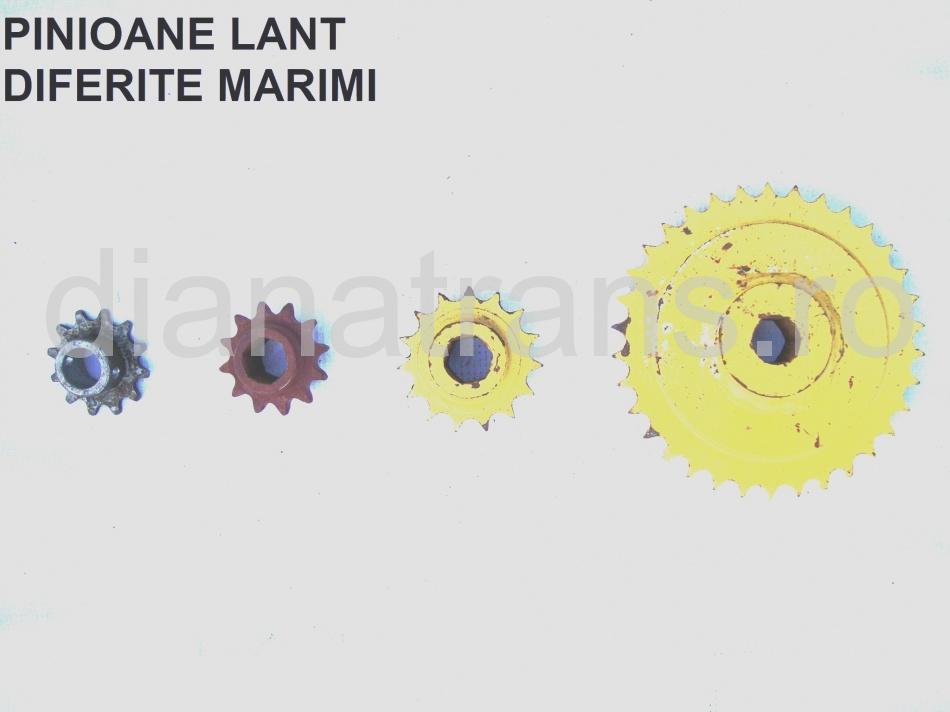PINIOANE LANT DIFERITE MARIMI