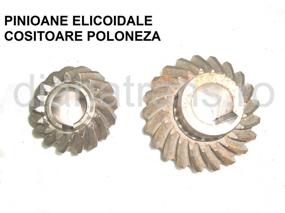 PINIOANE ELICOIDALE COSITOARE POLONEZA