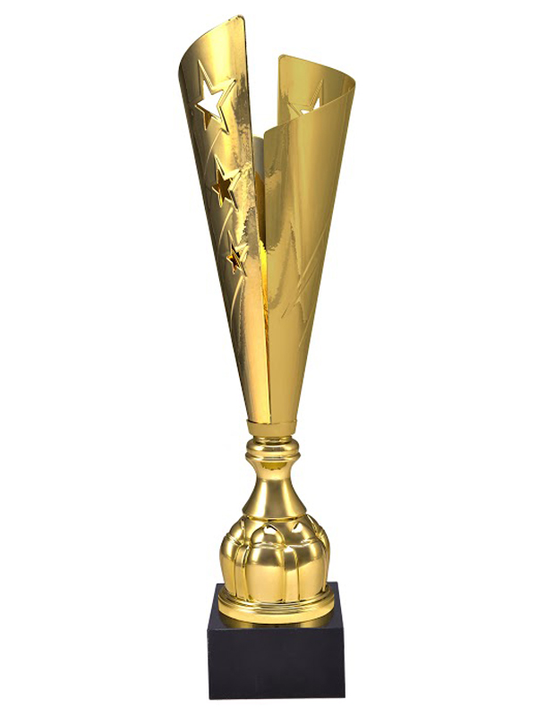 Cupa Aur 3104