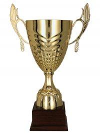 Cupa Aur 3121