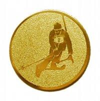 Placuta Medalie schi D2-A93