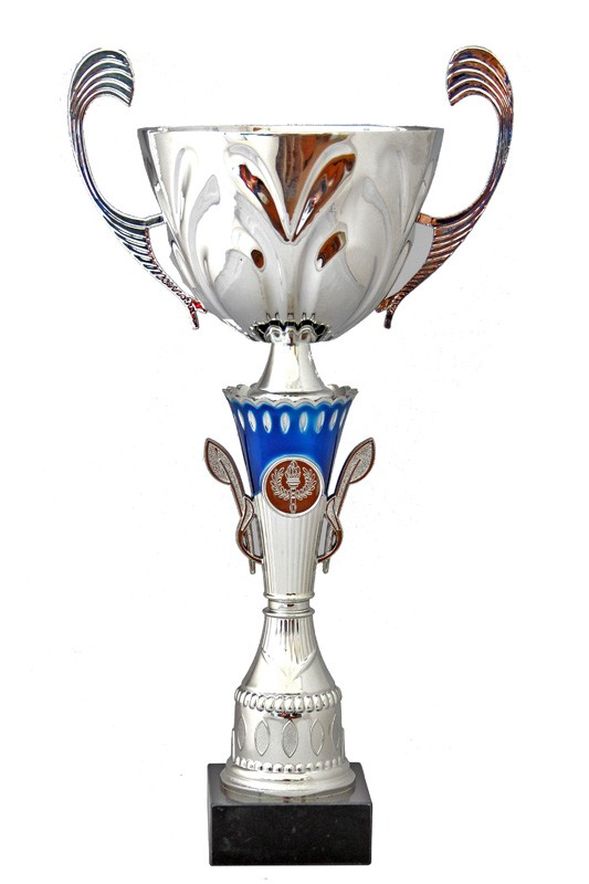 Cupa W650