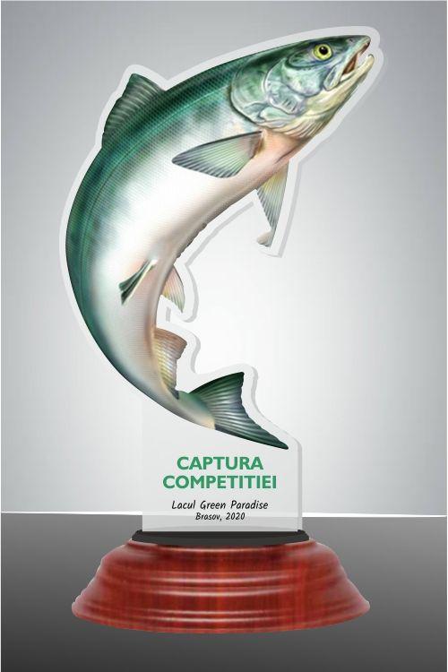 FISH02 1