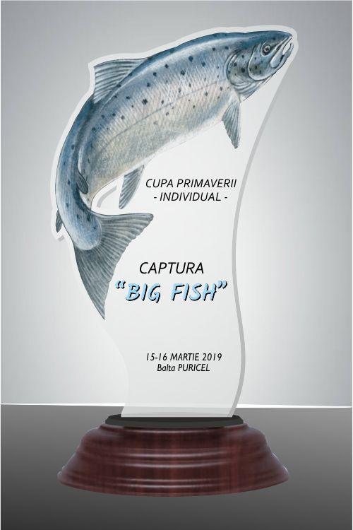 FISH03 1