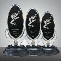 Trofeu acryl premium  WAT01-BK