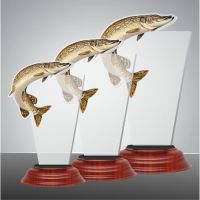 FISH01 2