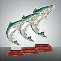 FISH02 2