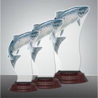FISH03 2