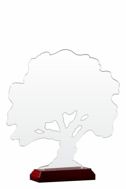 copac viata