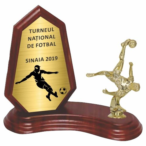 Trofeu lemn WF404Figurina fotbal F230 M
