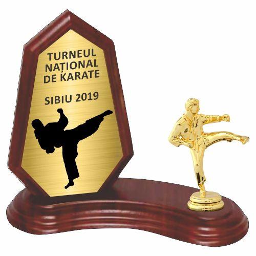 Trofeu lemn WF404Figurina Karate F10 M
