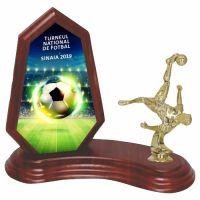 Trofeu lemn WF404Figurina fotbal F230 UV