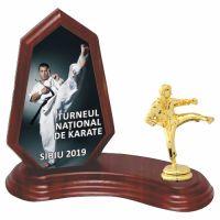 Trofeu lemn WF404Figurina Karate F10 UV