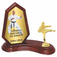 Trofeu lemn WF404Figurina Karate F10 MUV