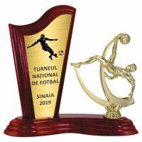 Trofeu lemn WF411+Figurină fotbal F223