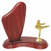 Trofeu lemn WF405Figurina Luptatoare Arte Martiale 427