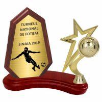 Trofeu lemn WF404+Figurină Fotbal-Stea F250