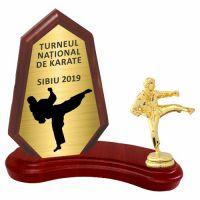 Trofeu lemn WF404+Figurină Karate F10